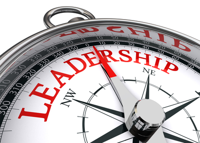 Change Leadership, Change Management - Leadership Development